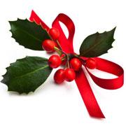 Immagini Di Fiori Di Natale.Fiori Per Natale Consegna Di Stelle Di Natale Consegna